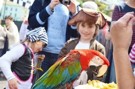 Holiday fun - Pirates