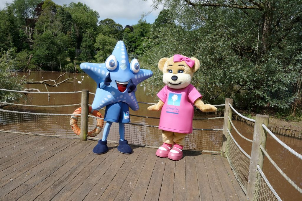 Beverley Bear and Sandy Starfish take a walk on the wildside