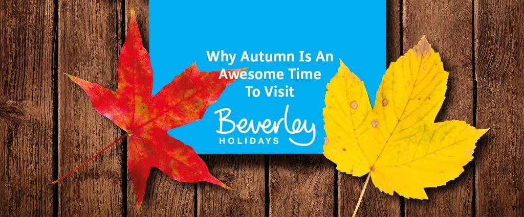 Autumn at Beverley Holidays