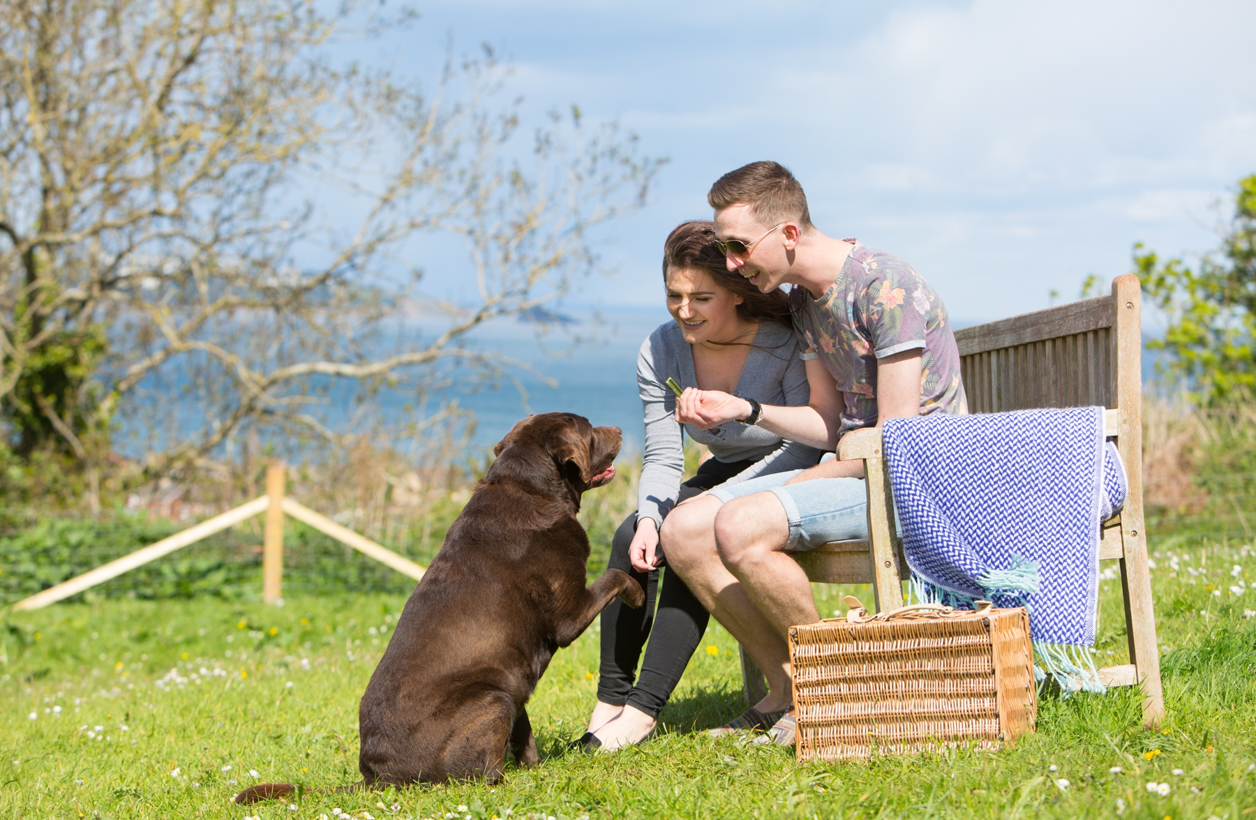 Bevereley dog friendly holiday park