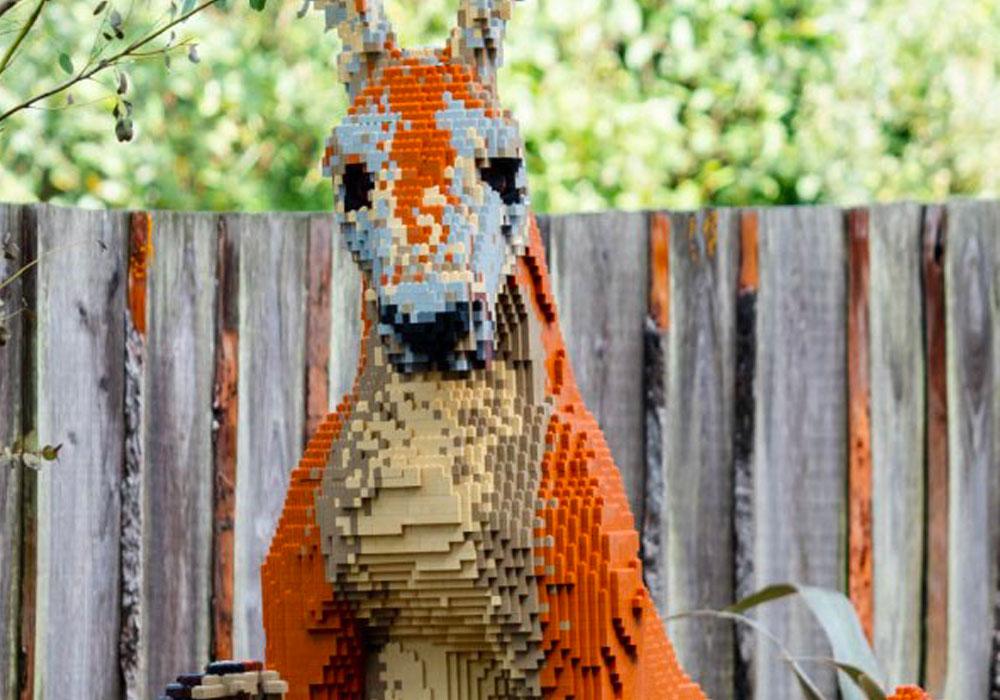 Paignton Zoo Lego