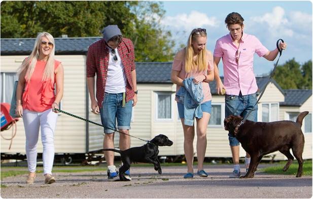 Dog friendly Devon holiday parks