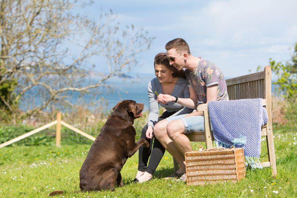 dog-exercise-area-beverley-holidays