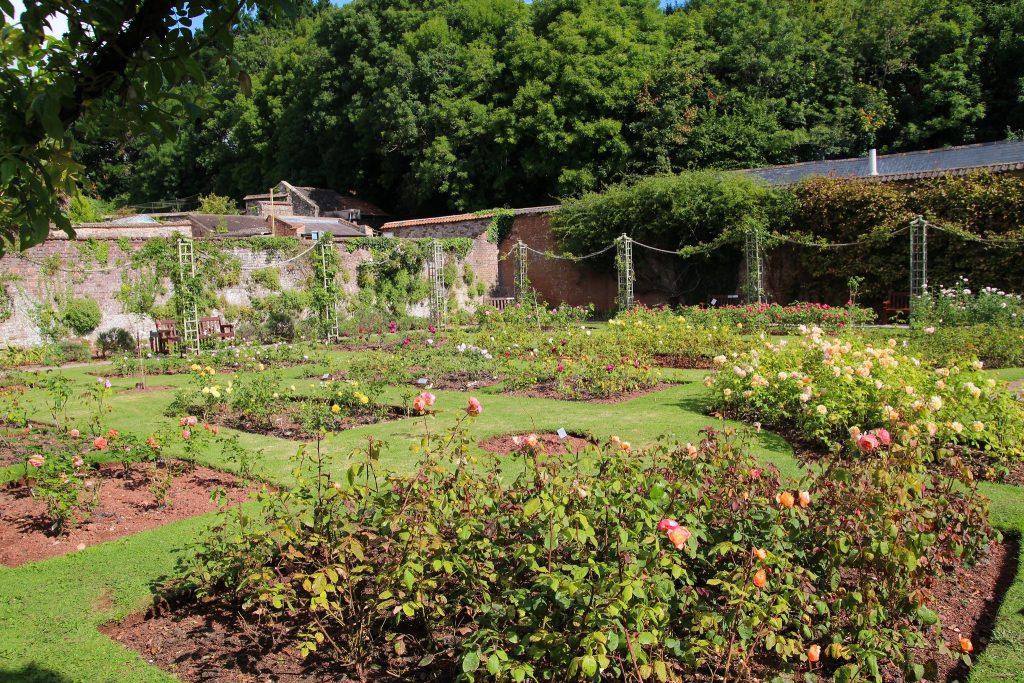 Cockington Court Country Park gardens