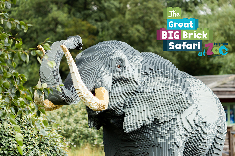 paignton-zoo-brick-safari