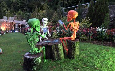 spooktacular skeletons